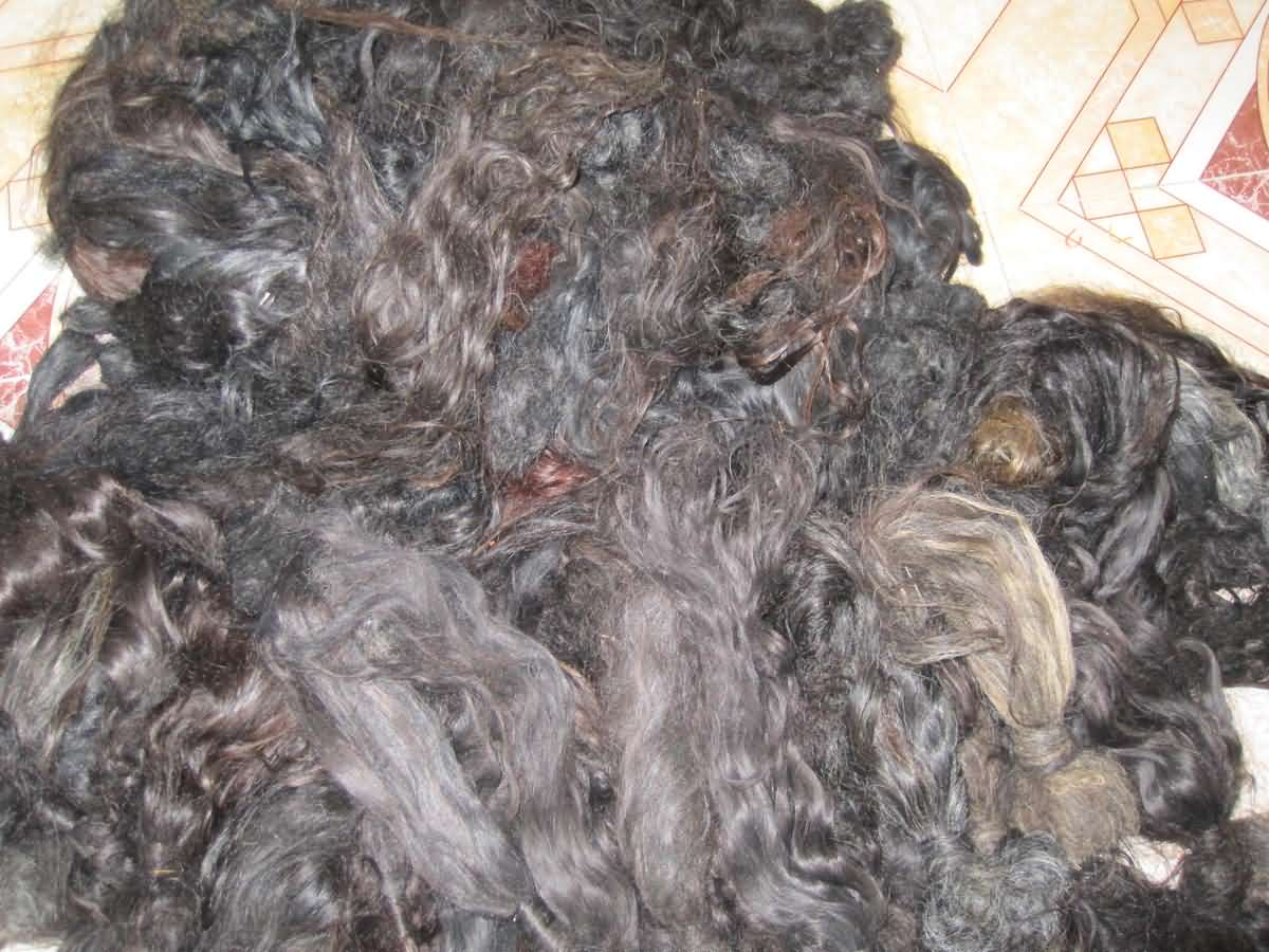 Raw Indian Hair collected from Indian Temples
